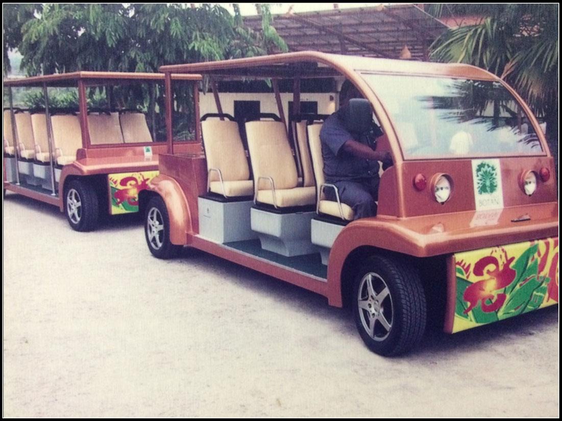 Golf Buggy Supplier Malaysia V