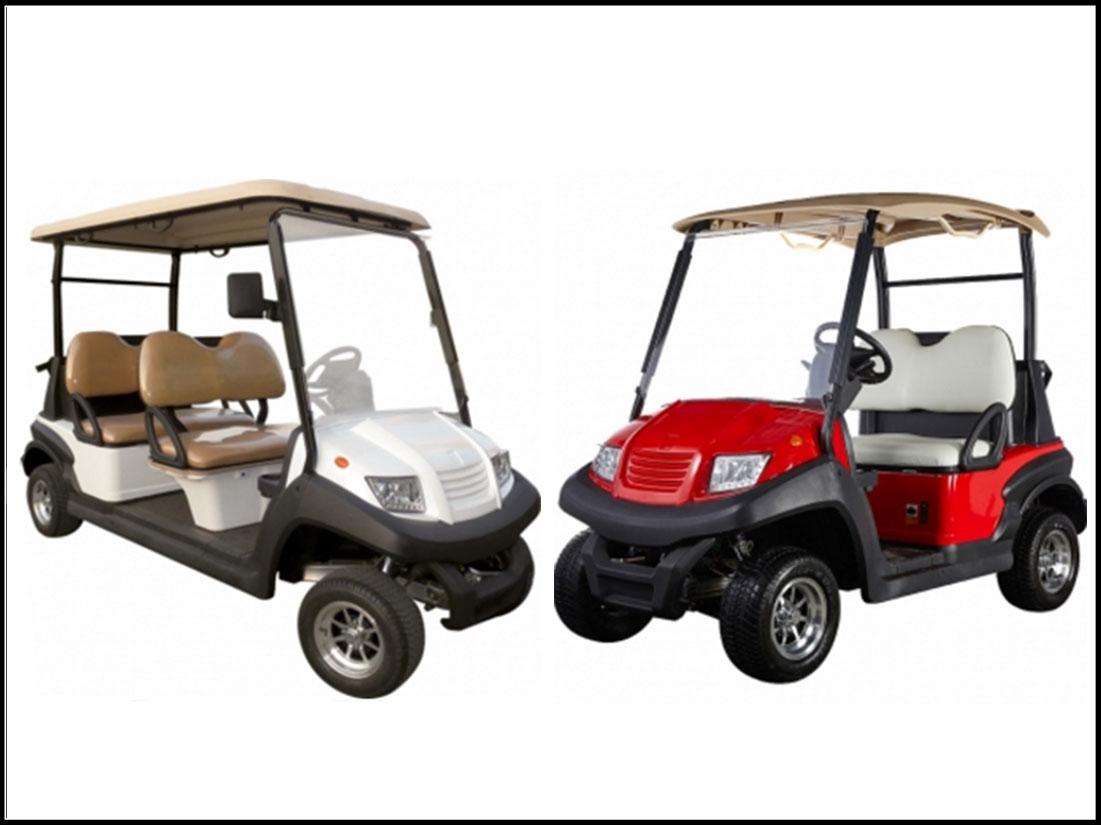 Golf Buggy Supplier Malaysia IX