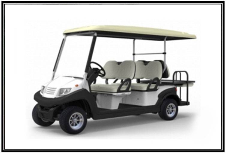 TR2S4+2 HOPPER 6 SEATER BUGGY