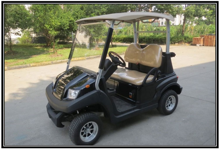 TR2S2 HOPPER 2 SEATER BUGGY